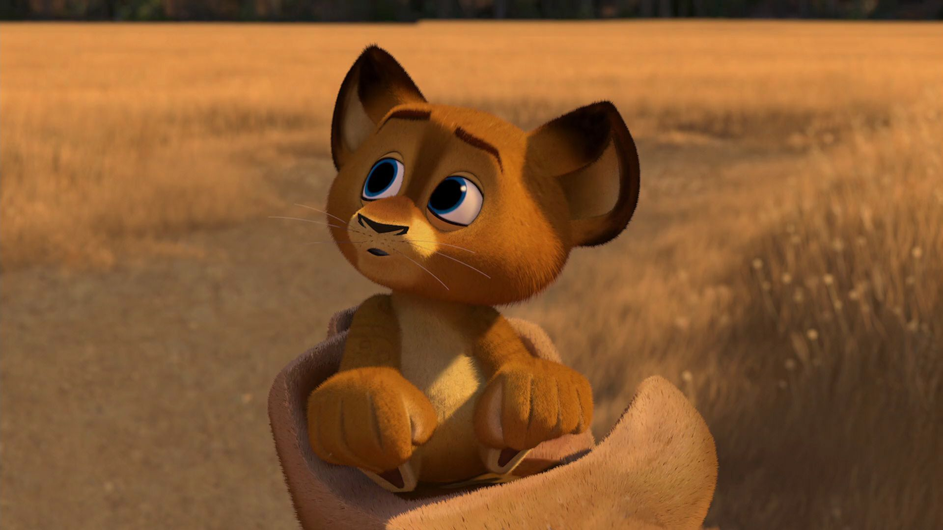 Madagascar Escape 2 Africa 2008 Disney Screencaps Madagascar Movie Lion King Pictures Madagascar Escape 2 Africa