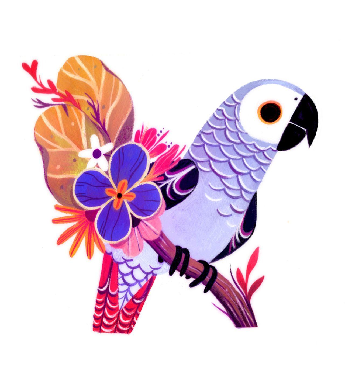 The Zoo Keeper Grey Art Print Bird Art Art