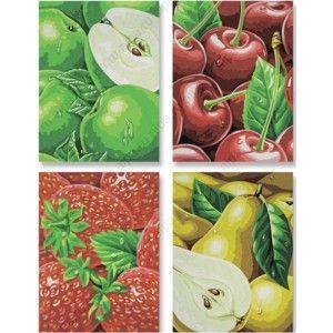 фрукты раскраски по номерам акриловыми красками Schipper
