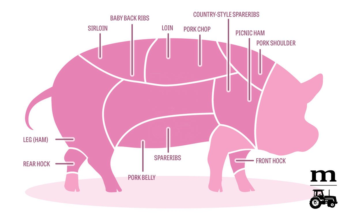 A Diagram of Pork Cuts—And How To Cook Each Part | Pinterest ...