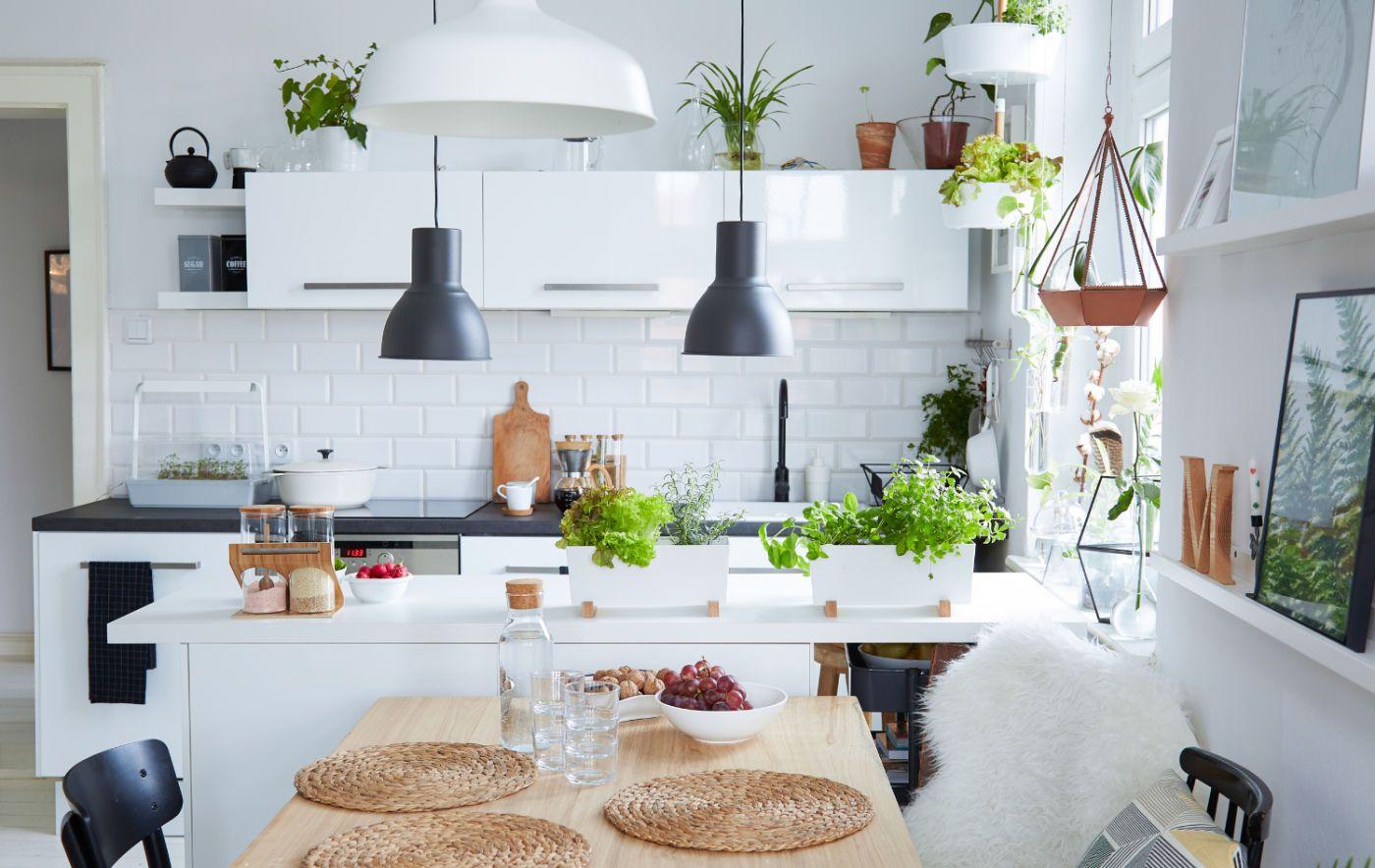 Familiäre Wohnküche einrichten | Wohnküche, Offene küche ...