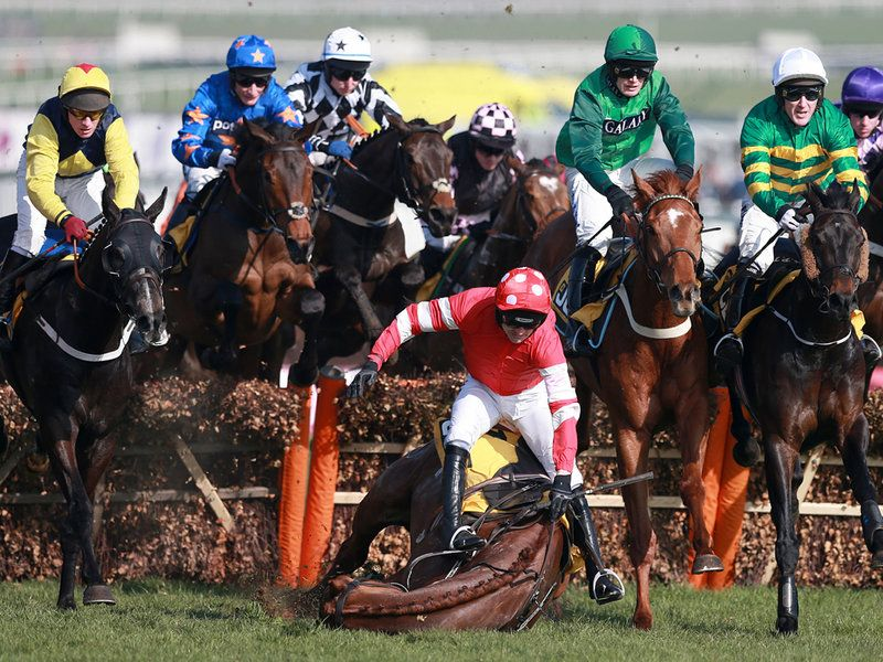 Ruby Walsh and Abbyssial come to grief in the JCB Triumph