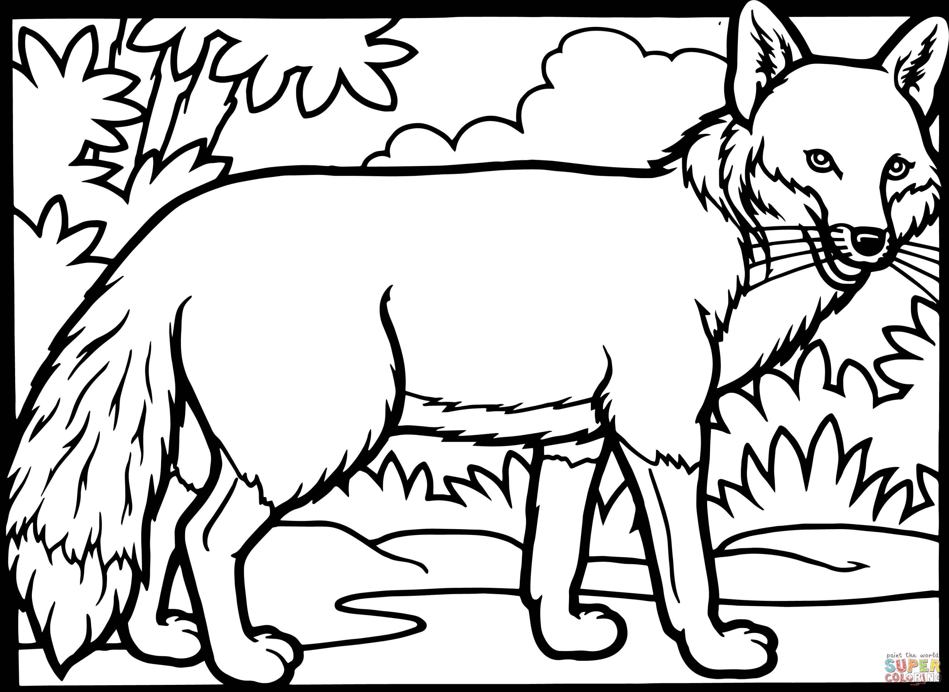 Red Fox Coloring Picture Tips