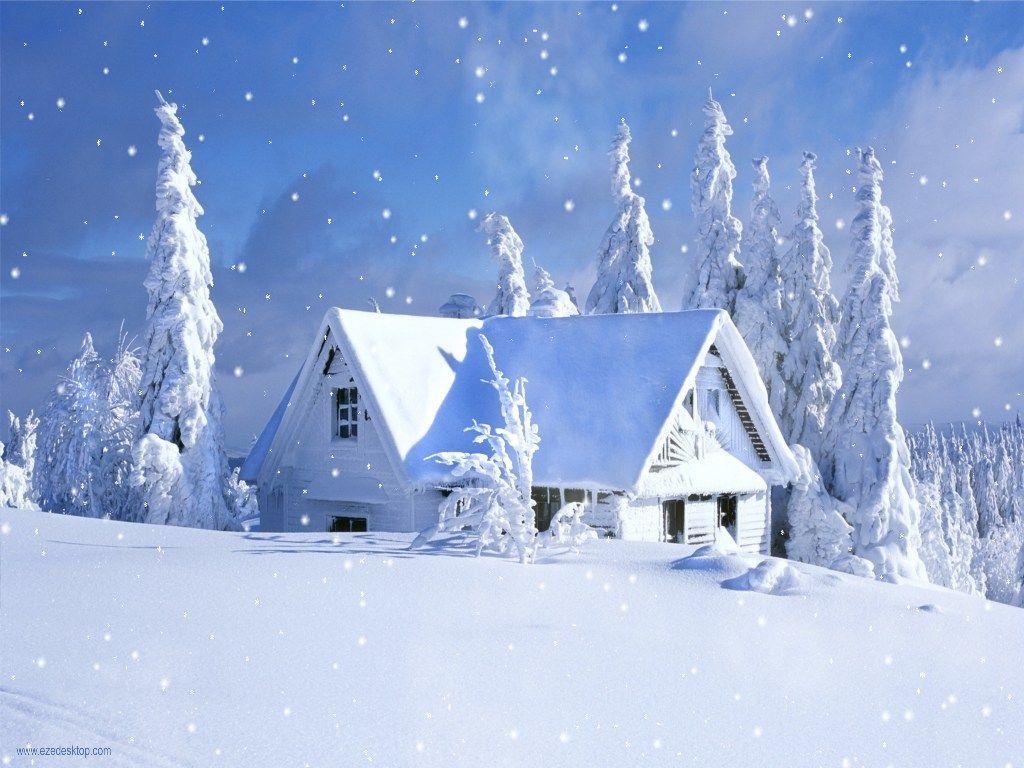 Falling Snow Screensaver Download Snowfall Night Snow Falling Winter Wallpaper Loadpaper Com Snow Images Winter Wallpaper Snowy Pictures
