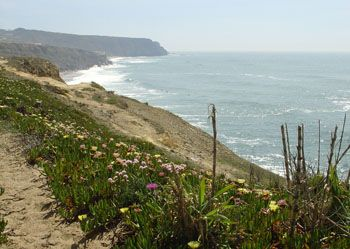 more view....quinta da Vigia R. da Praia Pequena 20, 2705-329 Colares, Portugal
