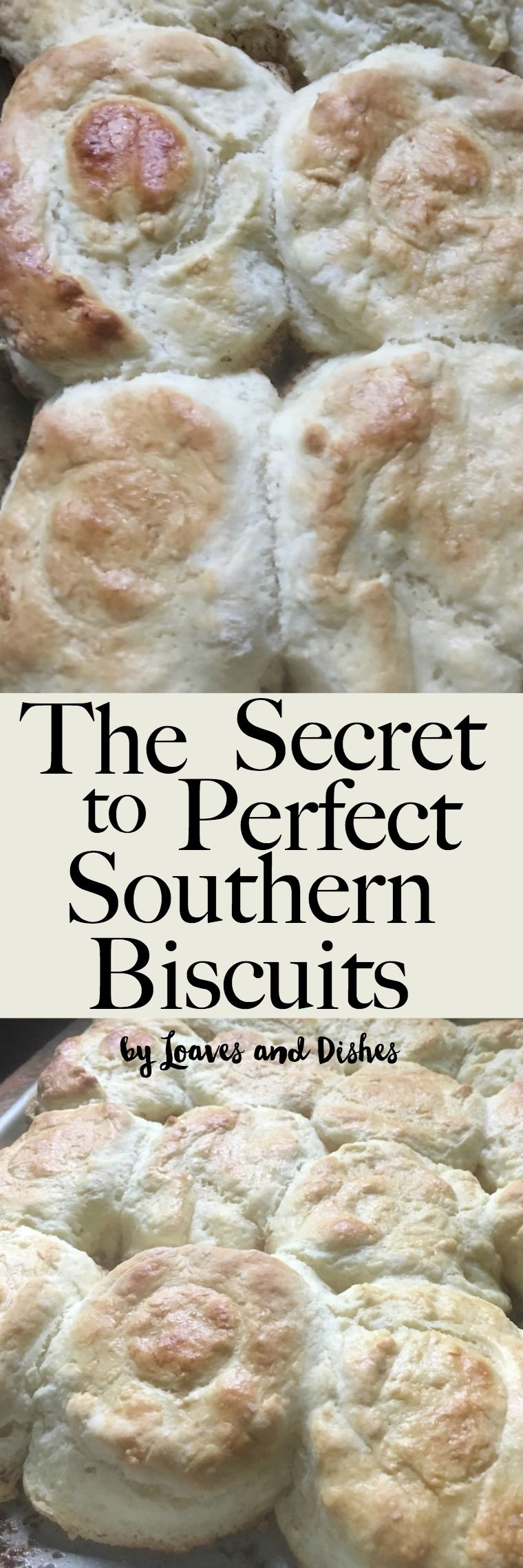 Homemade Easy Southern Biscuits Made With Buttermilk Like The Pioneer Woman Or Paula Deen Might Make Southern Biscuits Homemade Biscuits Recipe Food