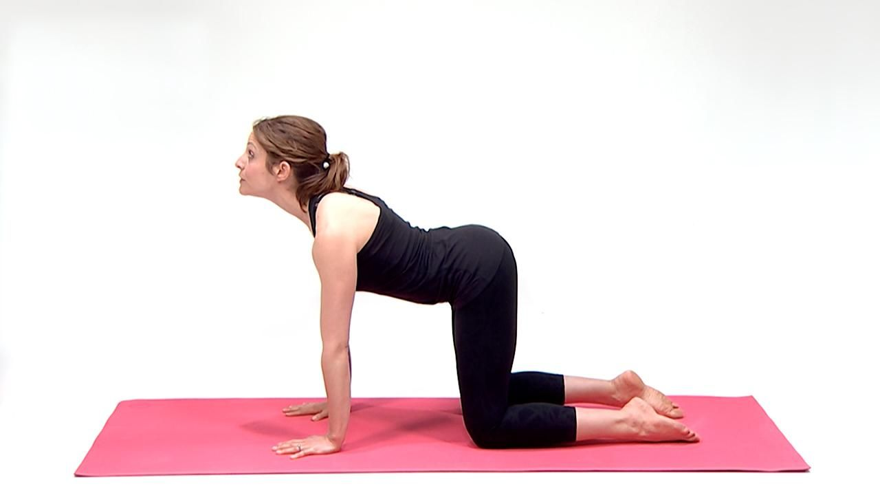 How to Do Cat-Cow Yoga Pose | Cat cow yoga pose, Yoga ...