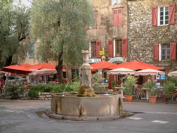 Tourtour Fontaine Oliviers Arbres Terrasse De Café