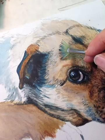 Check Out How To Paint A Dog Portrait It S So Easy To