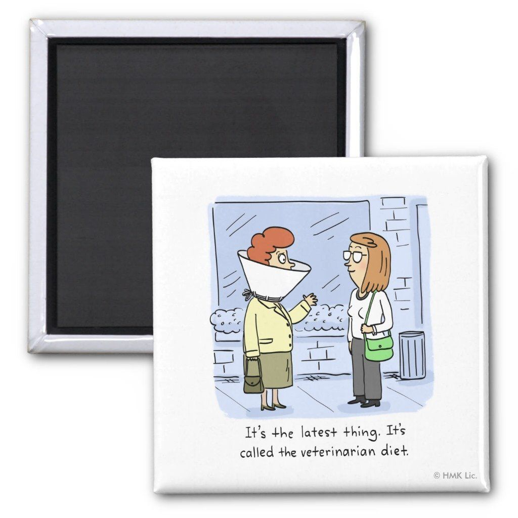 Female Fridge Magnet Aid to stop going in the fridge Weight loss Slimming