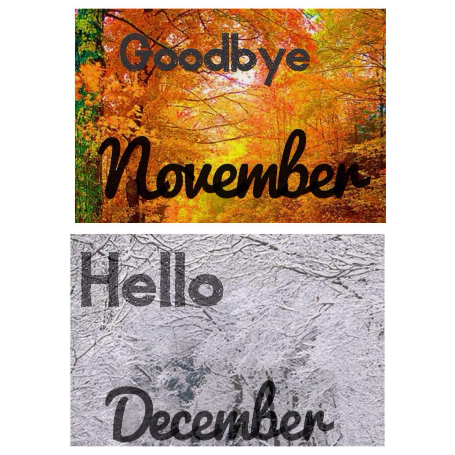 Goodbye November and hello December ! Hello december