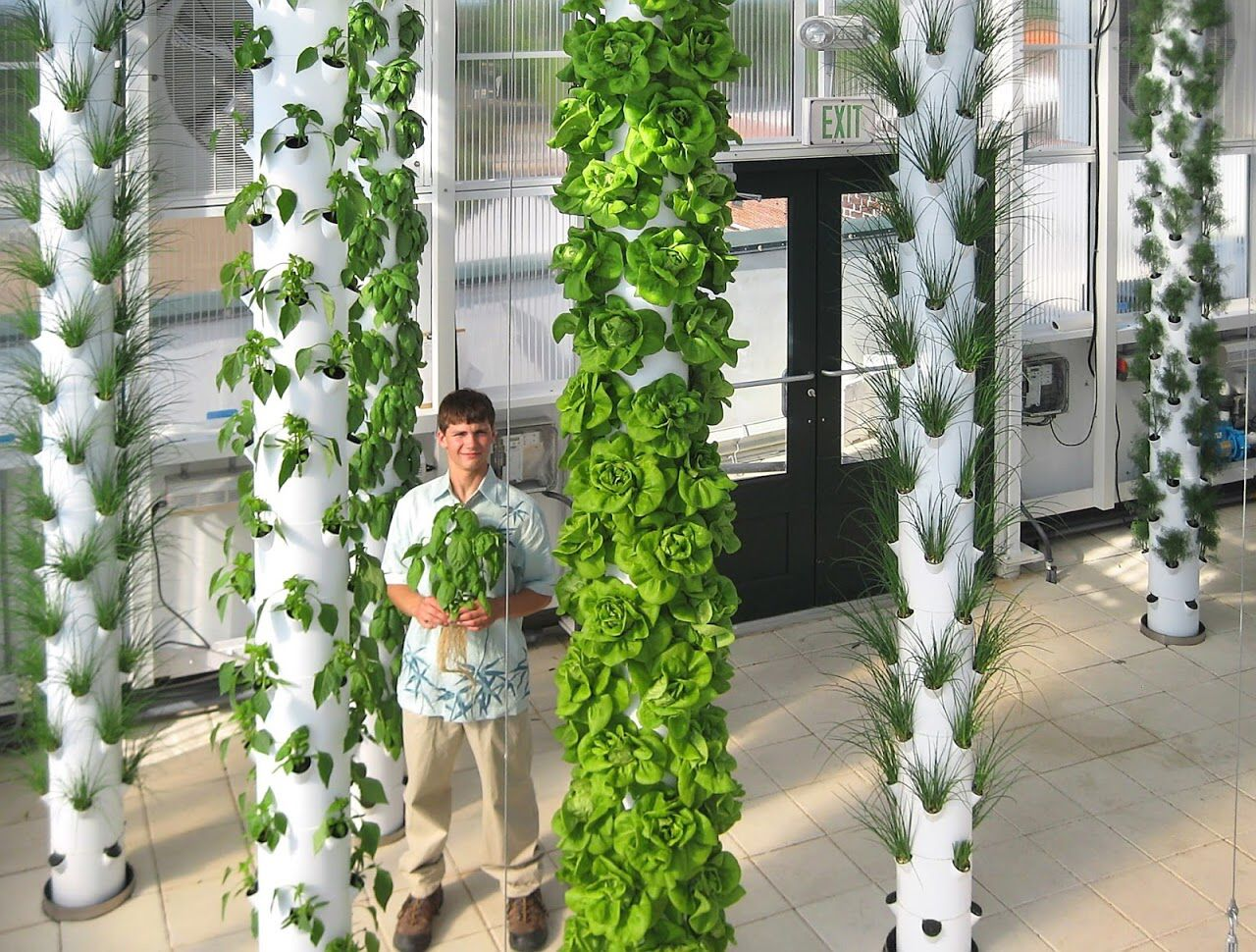 Elegant Aquaponics Meets Tower Garden @ The Garden Building Rooftop Greenhouse In  Orlando, FL Www.markgs.towergarden.com