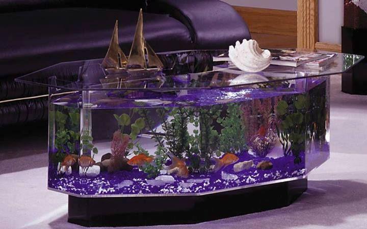 Fish Tank Coffee Table I like this FUN Pinterest Fish tank