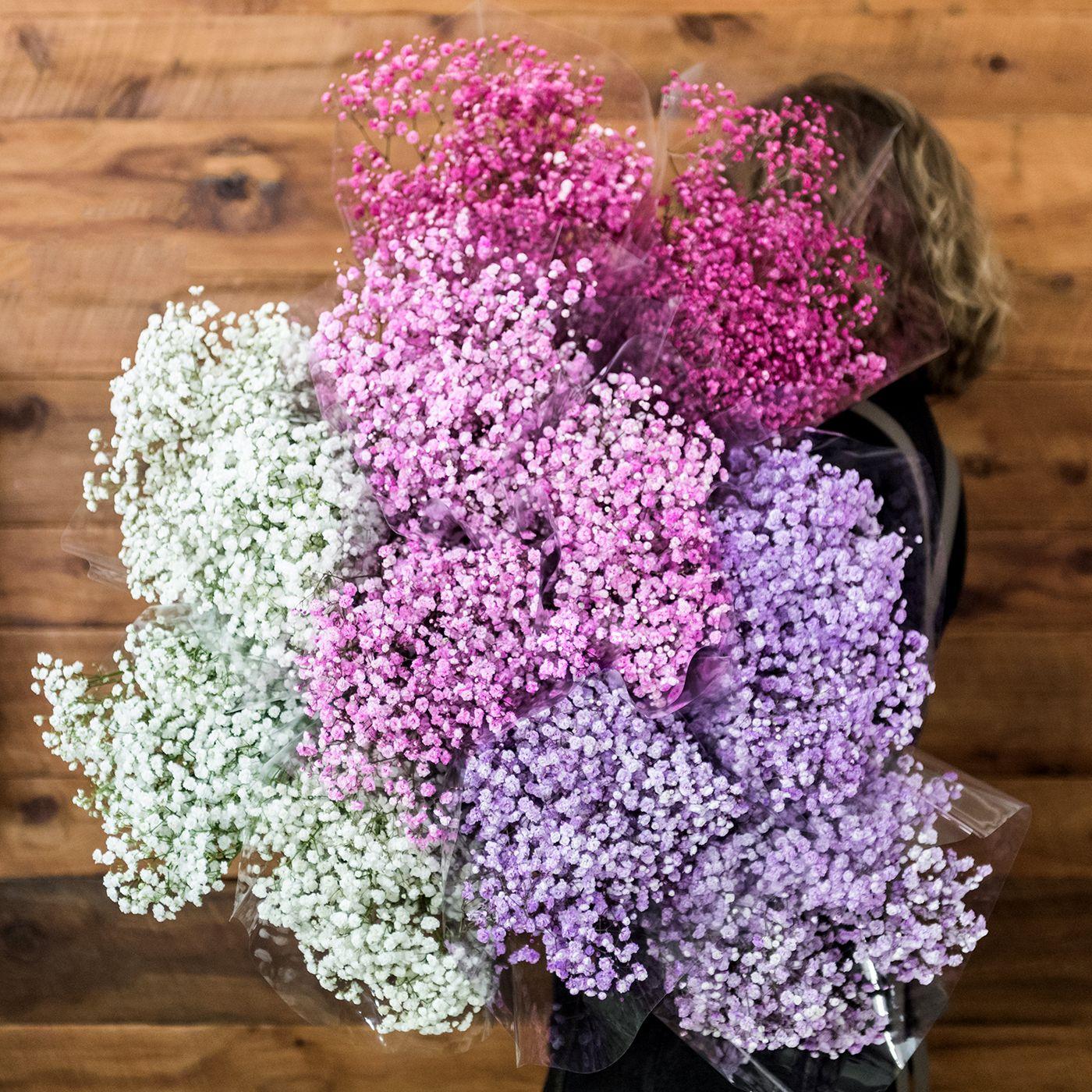 Pin On Fresh Market Flowers