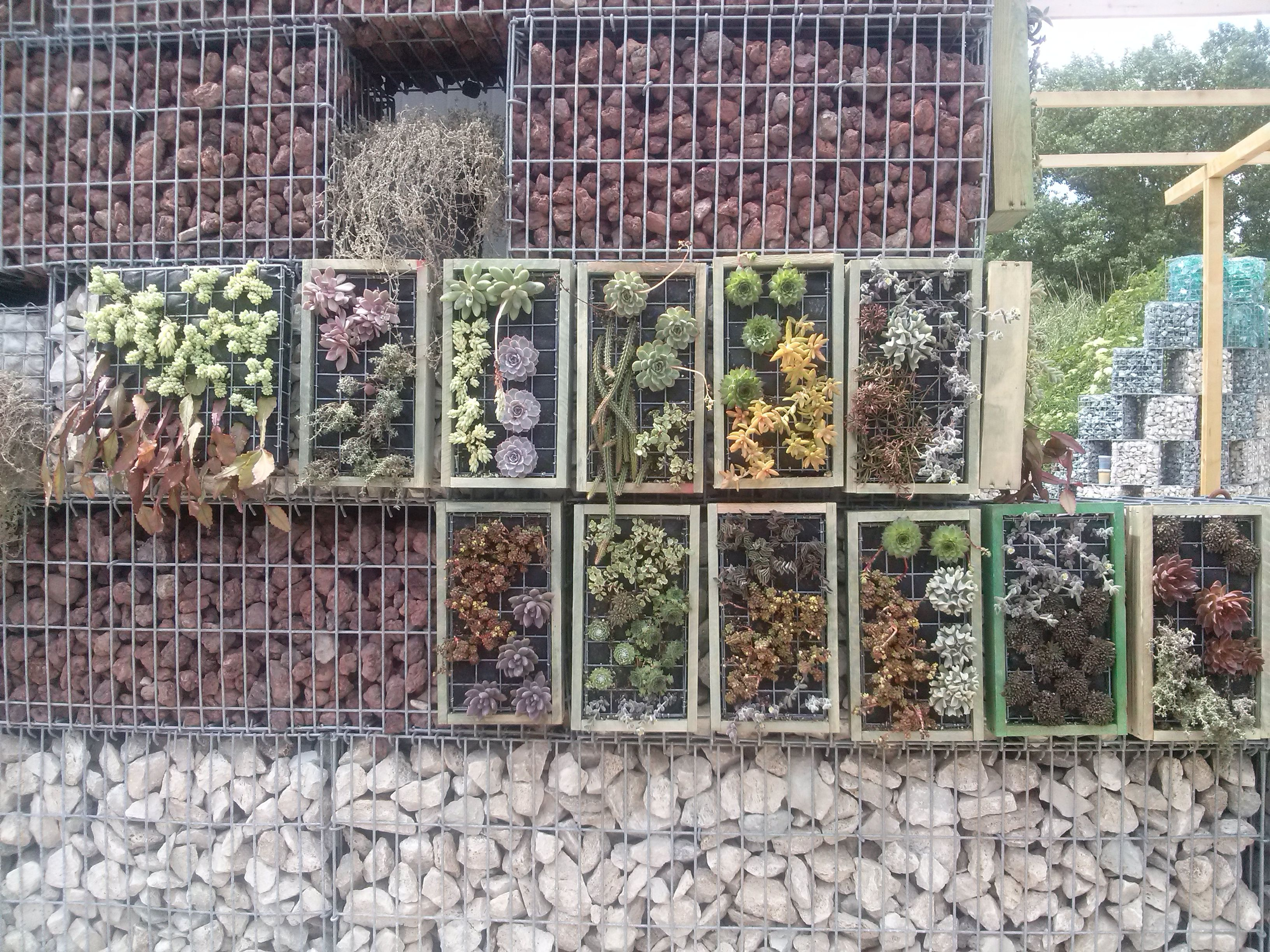 Vendita Moduli Giardino Verticale Tivoli Roma Giardini