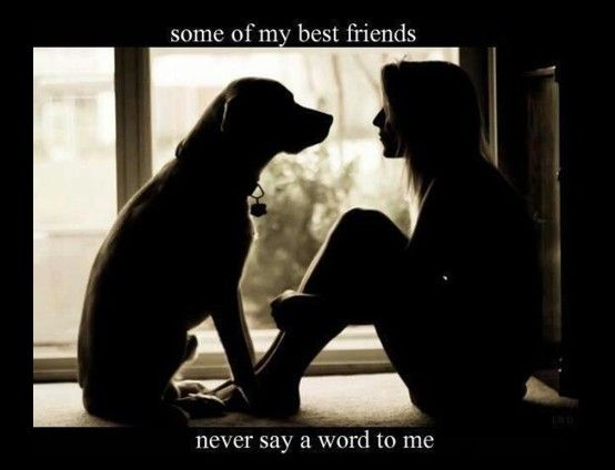 Quotes About A Girl And Her Dog Impressive A Girls Best Friend Is Her Dog Or Cat Love Pinterest Dog