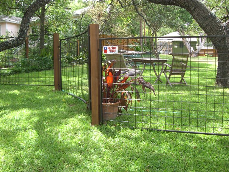 Fence Company Austin | Bull Panel Fencing | Garden | Pinterest