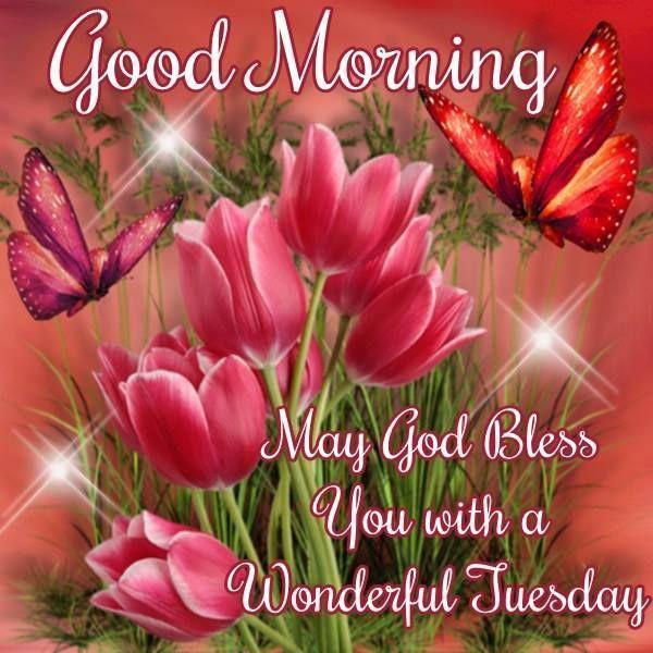 Superieur 084fa5aaf0b41e605abbf85cf1603cd1  Good Morning Greetings Happy Tuesday  (600