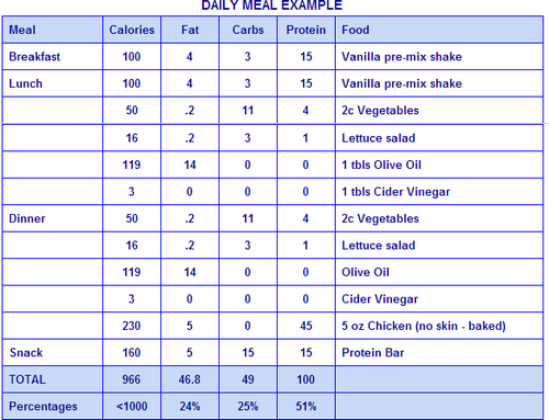high protein low carb diet plan pdf