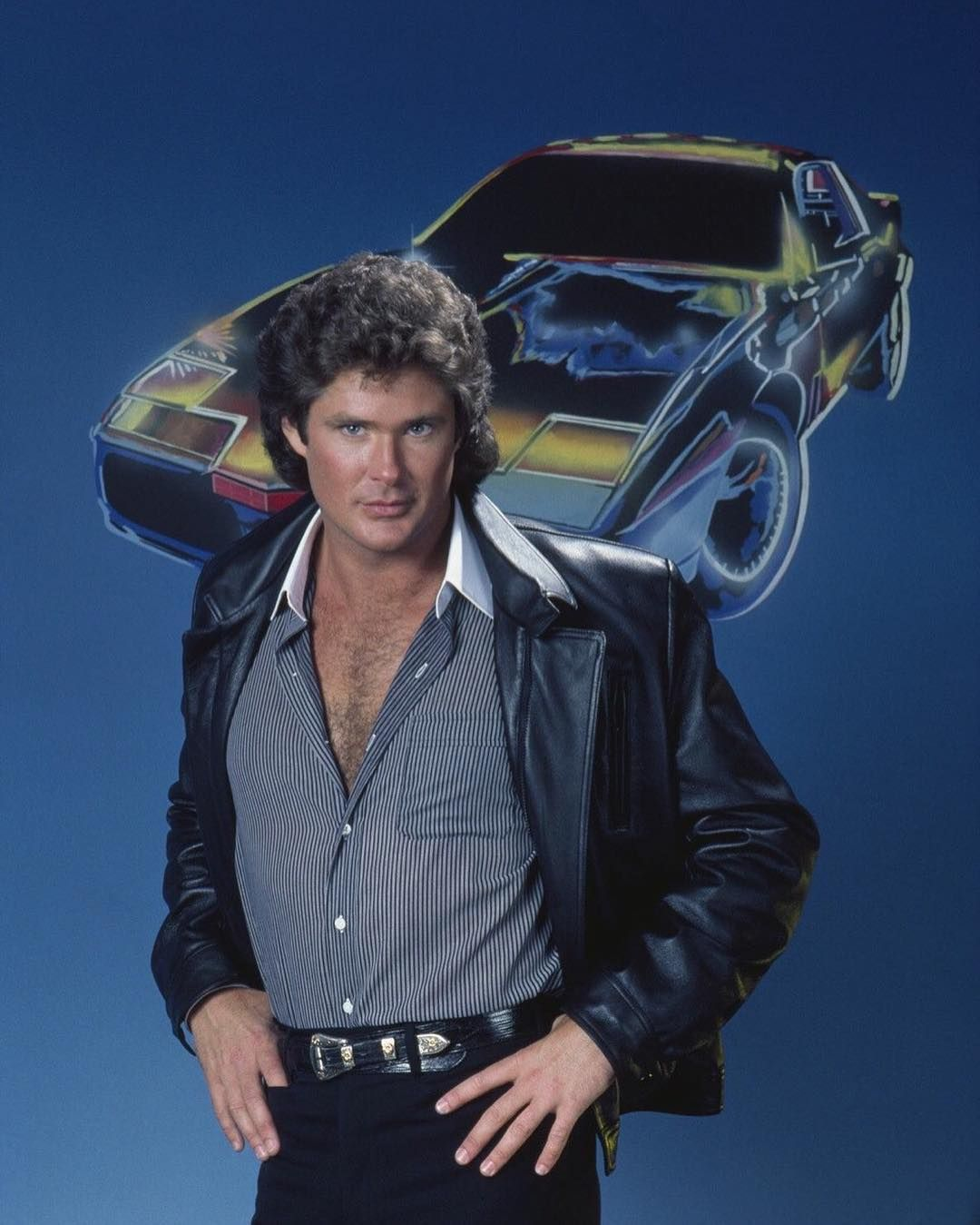 Dont hassle the Hoff. by @themidnightla on Instagram http://ift.tt/1XIEmyH
