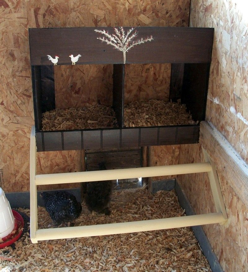 Id es pour pondoir poules poulailler pinterest for Amenagement interieur de poulailler