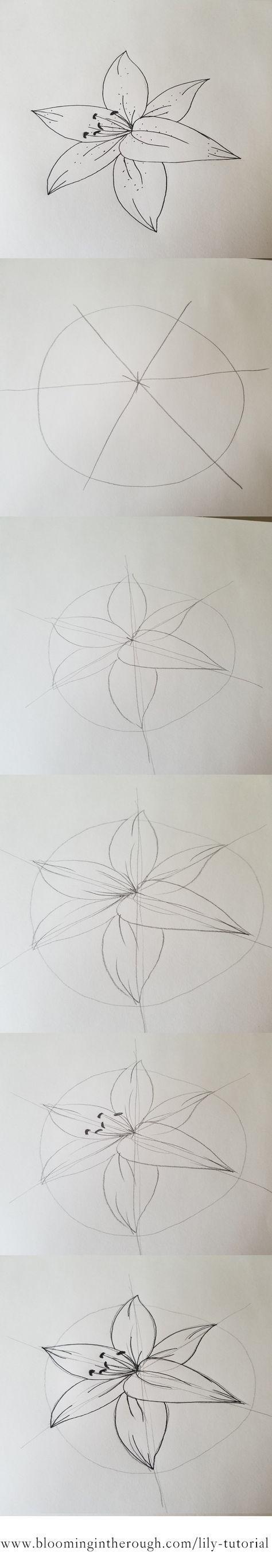Cara Melukis Kanvas : melukis, kanvas, Tutorial, Flower, Drawing,, Drawings,, Drawings