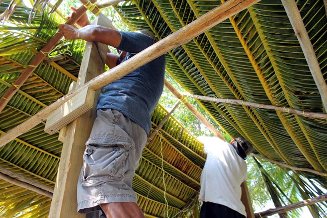 Building A Palm Thatch Roof Thatched Roof Thatch Roof