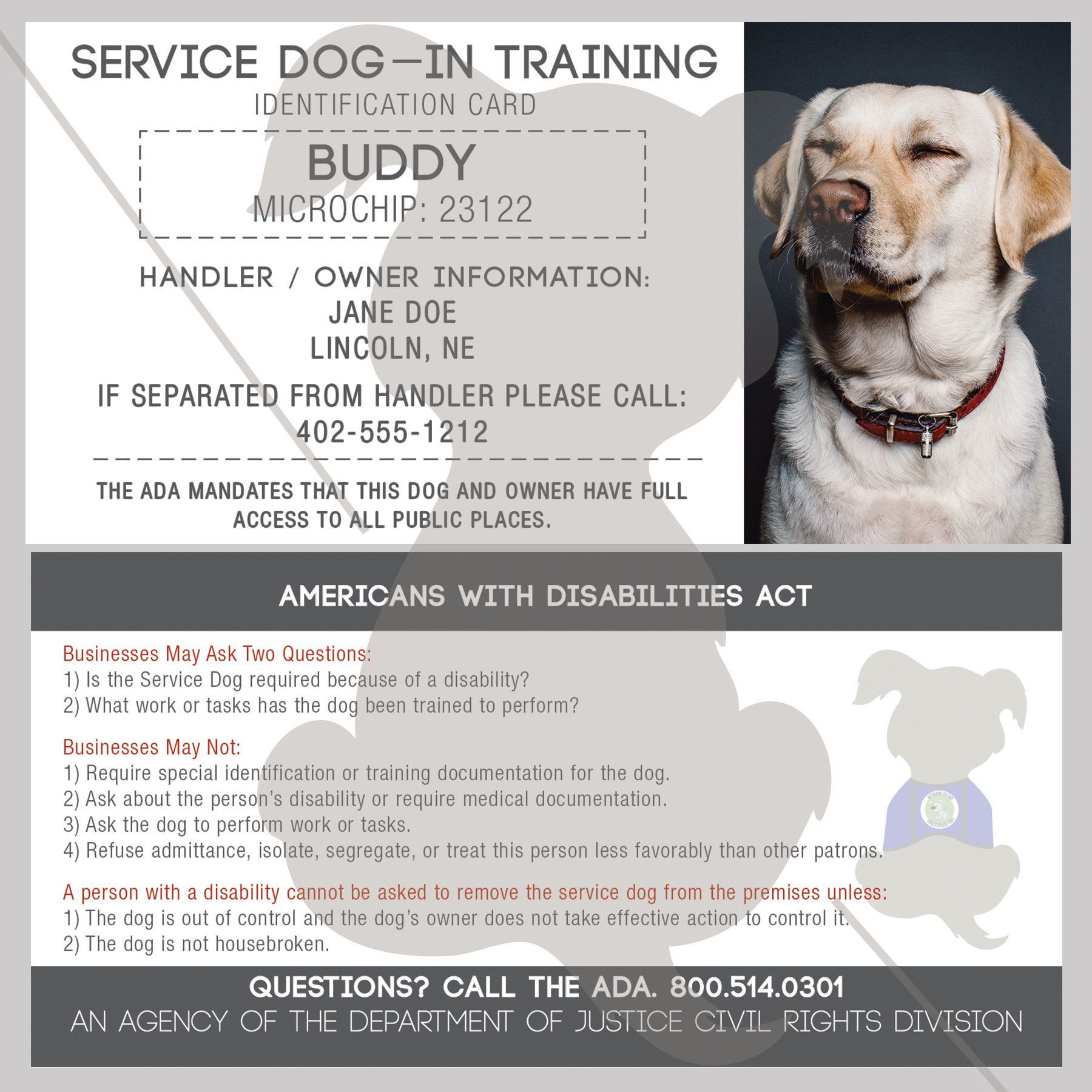 Id Card Service Dog In Training Service Dogs Dog Training