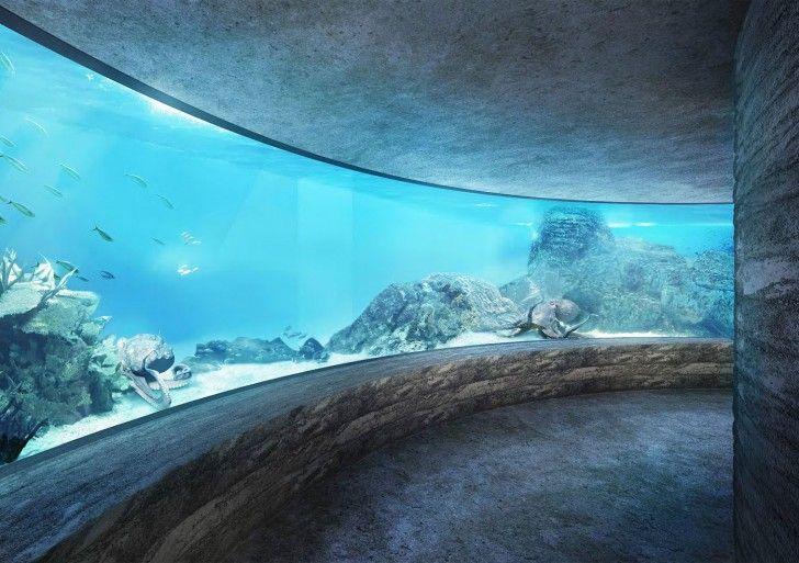 Ozeanium / Boltshauser Architekten