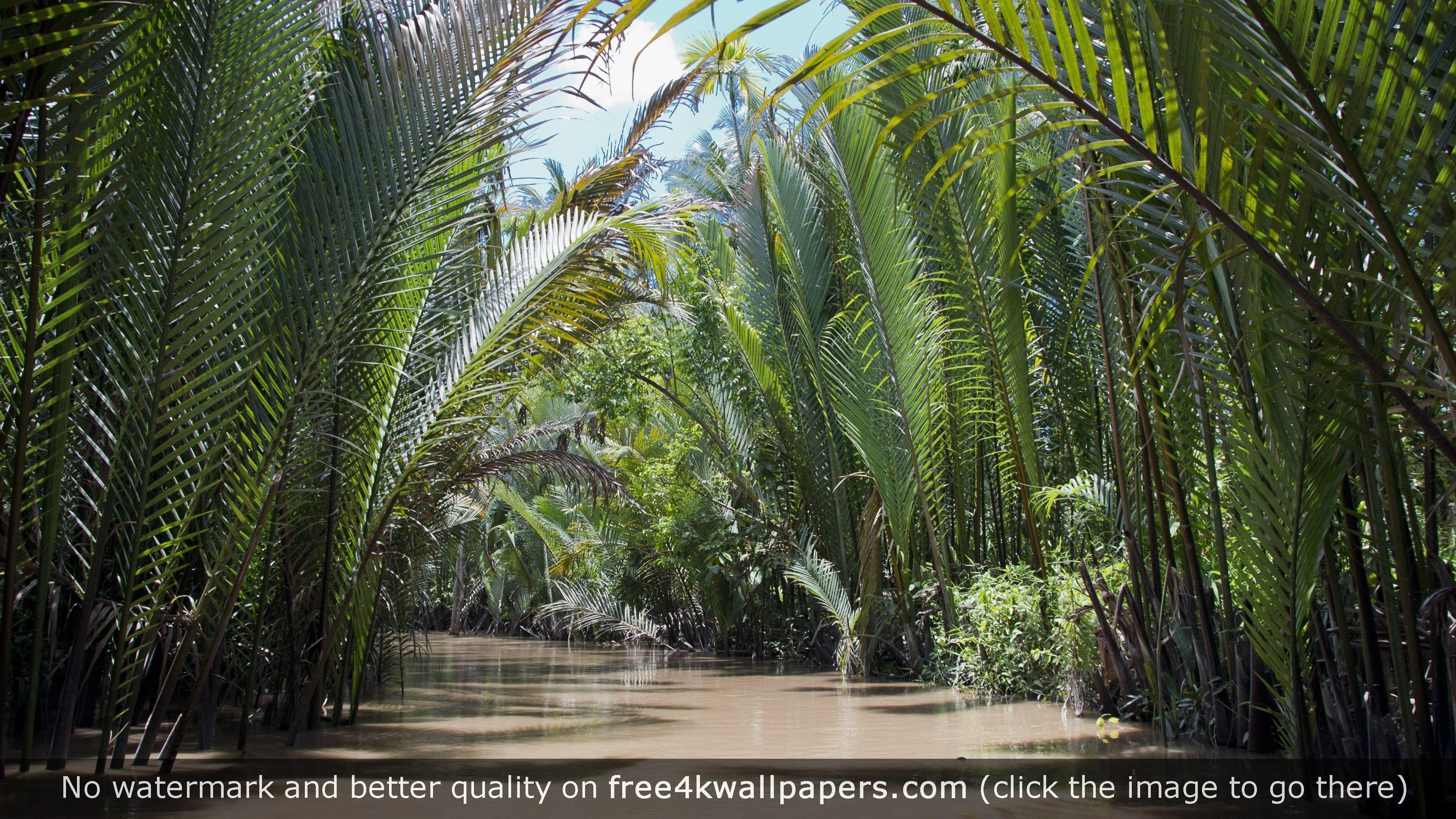 Mekong river vietnam wallpaper httpsfree4kwallpapers mekong river vietnam 4k wallpaper voltagebd Images