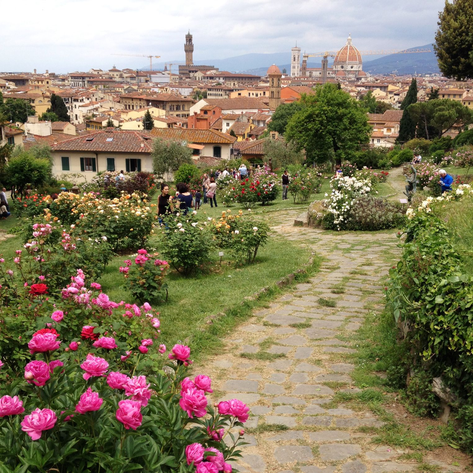 Florence In Spring Terre