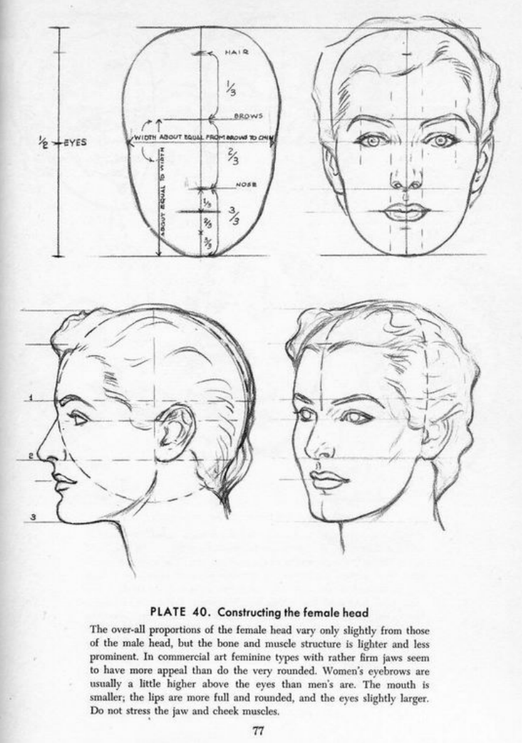 Drawing The Head And Hands - Andrew Loomis | Face ...