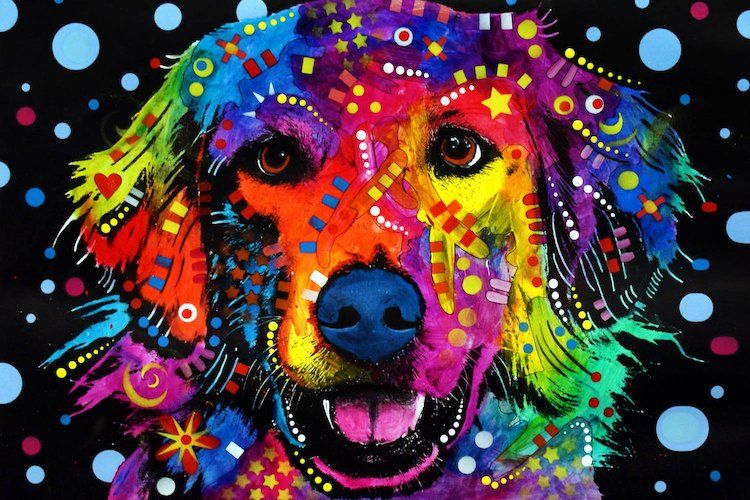 Golden Retriever By Dean Russo Wrapped Canvas Print On Canvas In 2021 Pop Art Pop Art Colors Graphic Art Print