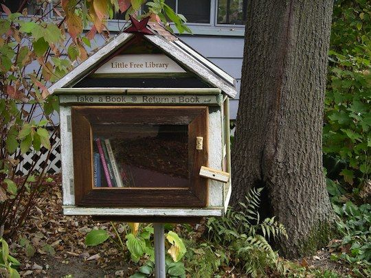 Make a mini library and put it in your front yard so others can take books you are finished with. What a wonderful idea!