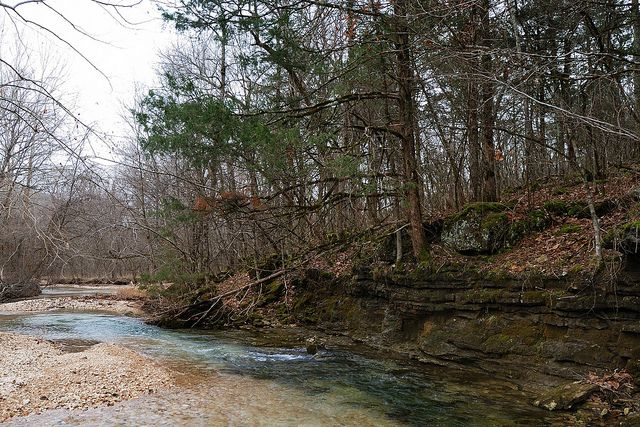 C Creek In Busiek State Park And Wildlife Area Forest