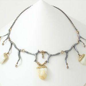Caleb Meyer Custom Elk Tooth Necklace #1821