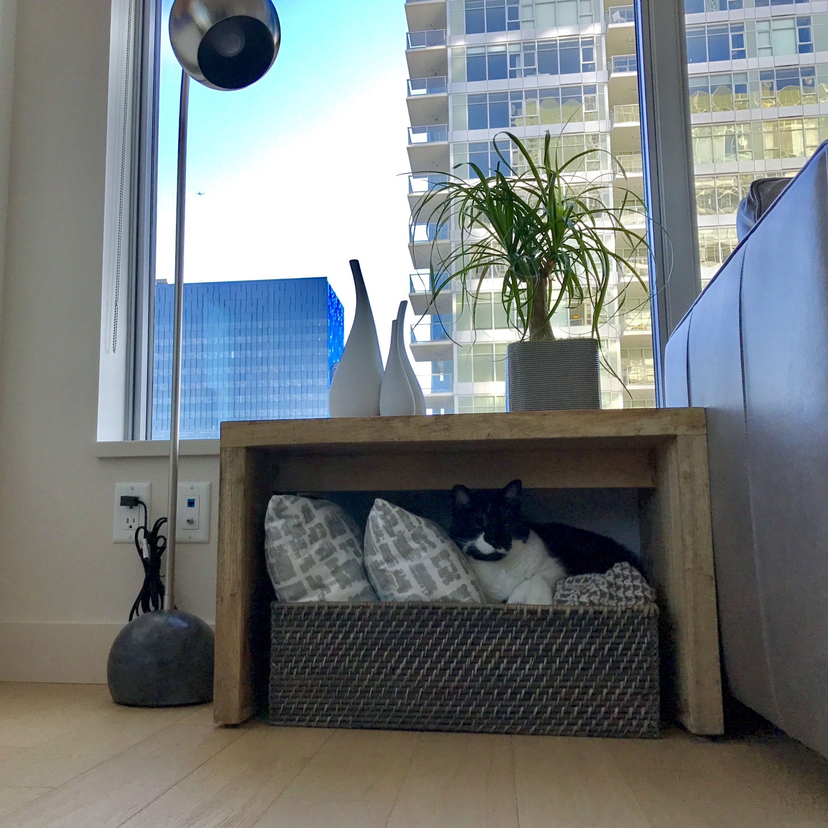 West elm organizer basket kittyus favorite comfy spot seattle