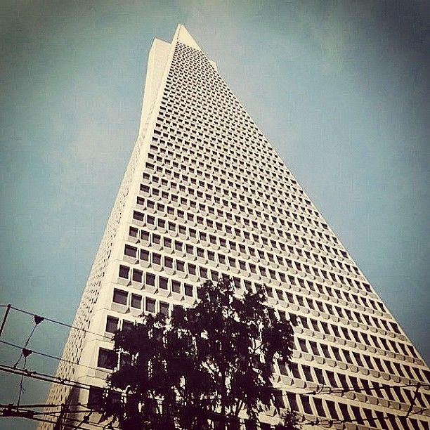 Transamerica Pyramid #building by William L. Pereira (1972) #SanFrancisco #California #archdaily #architecture #architecturalphtography #instagood #iphonesia #buildingmadness