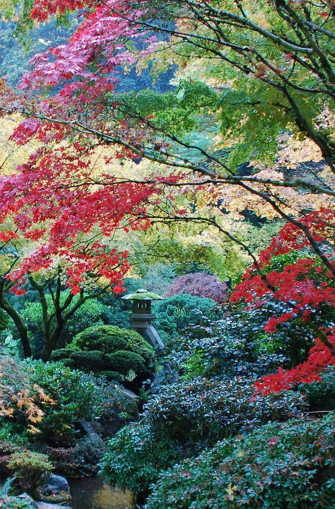 Japanese Garden, Photography, Landscape Beautiful