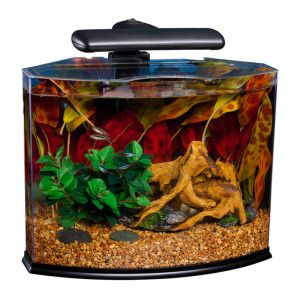 Marineland crescent 3 gallon aquarium system petsmart for 5 gallon glass fish tank