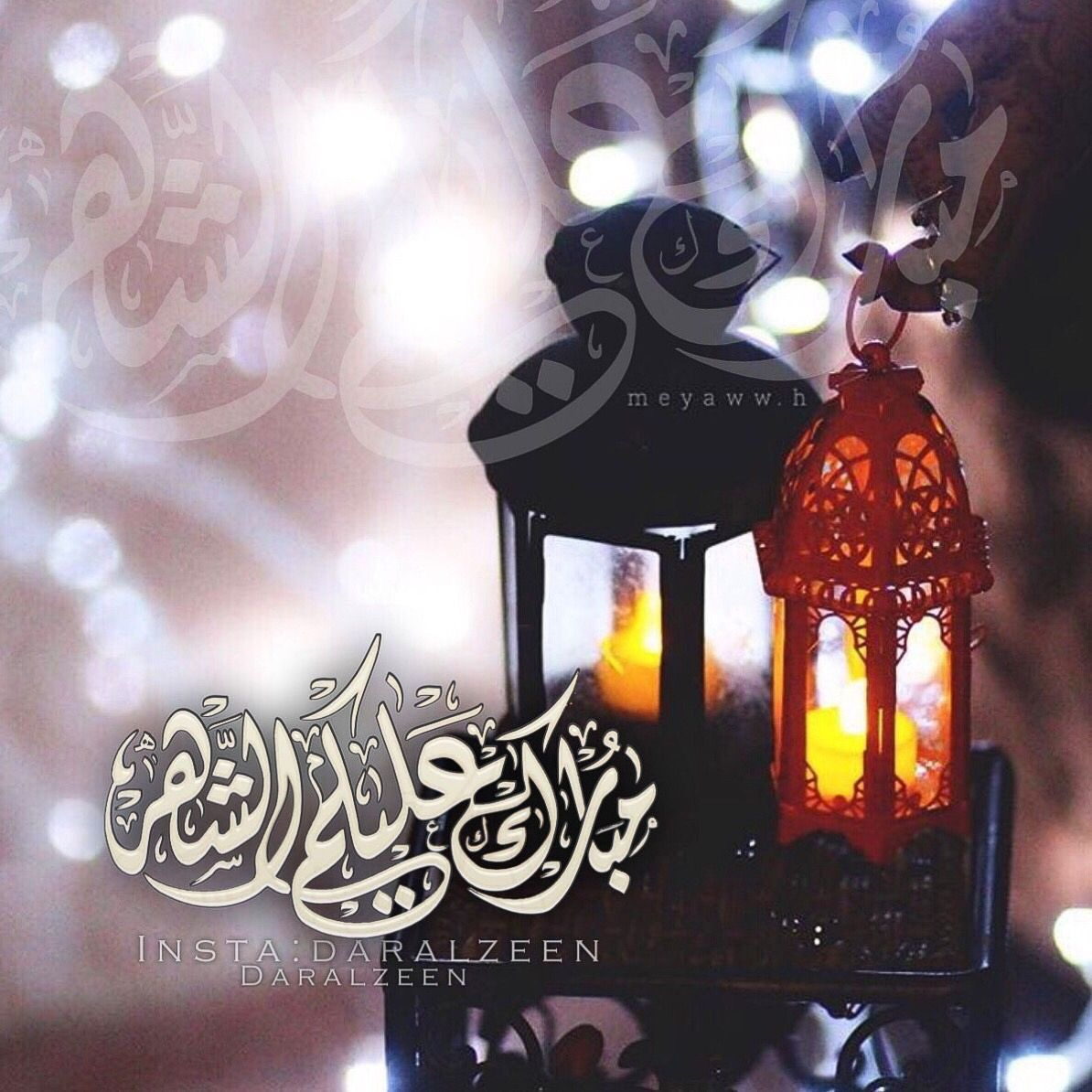 مبارك عليكم الشهر Ramadan Greetings Beautiful Flowers Ramadan Kareem