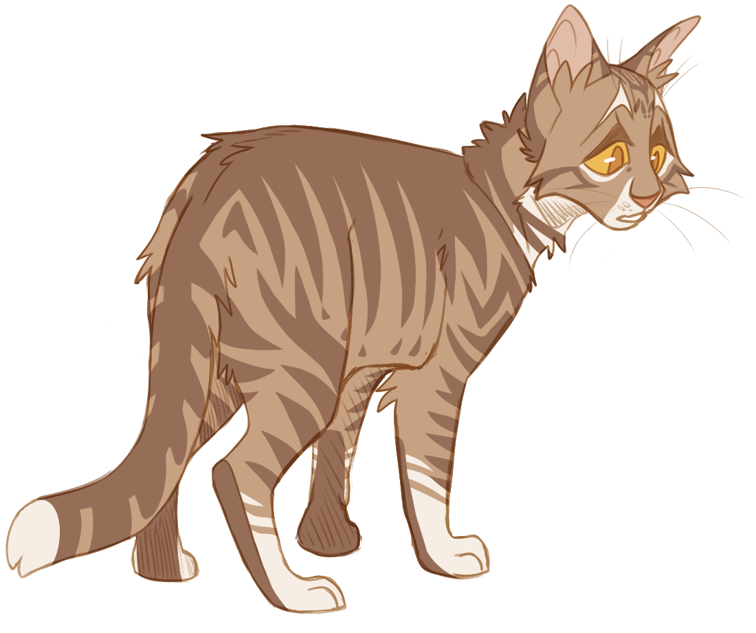 100 Warrior Cats Challenge Day 9 Leafpool Warrior Cats