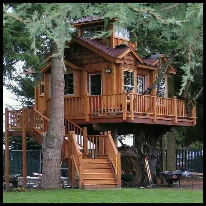 Beautiful Tree Houses, Adult Tree House, Cool