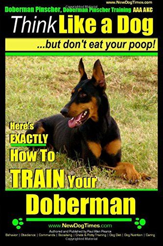Pin By Micki Sowell On My Kind Of Dog Doberman Pinscher