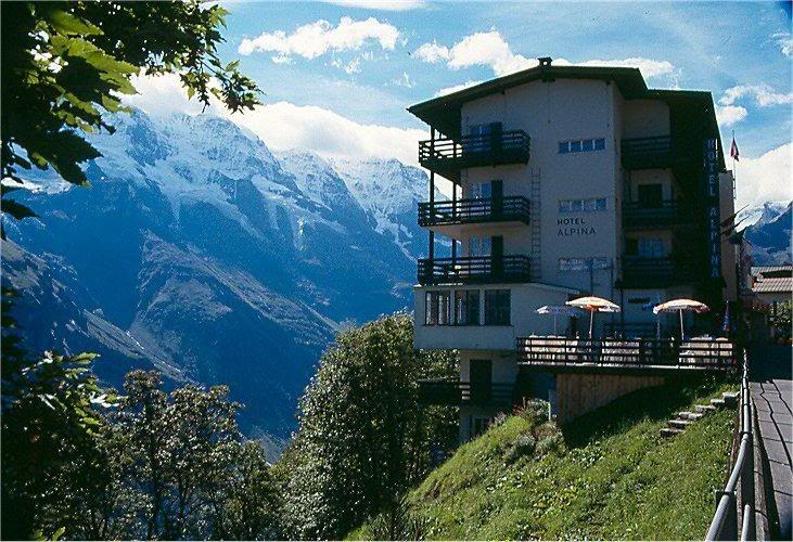 Hotel Alpina Murren Switzerland Ive Stayed On The Valley Side On - Hotel alpina murren switzerland