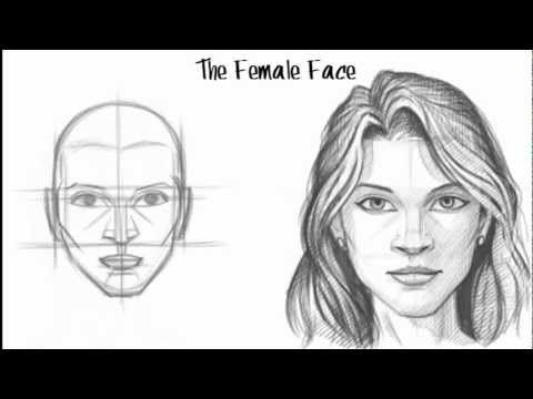 Male vs female face drawing google search