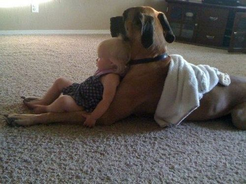 Watching TV with bestie - love it