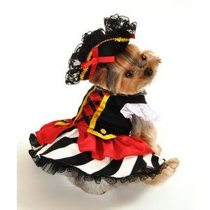 Anit Accessories Pirate Girl Dog Costume (walmart) Sc 1 St Pinterest  sc 1 st  Germanpascual.Com & Walmart Pet Costumes Halloween u0026 DIY Dog Dinosaur Costume Made From ...