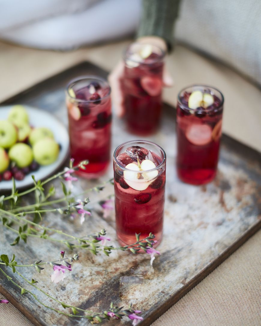Apple Cranberry Moscow Mule From Www Whatsgabycooking Com