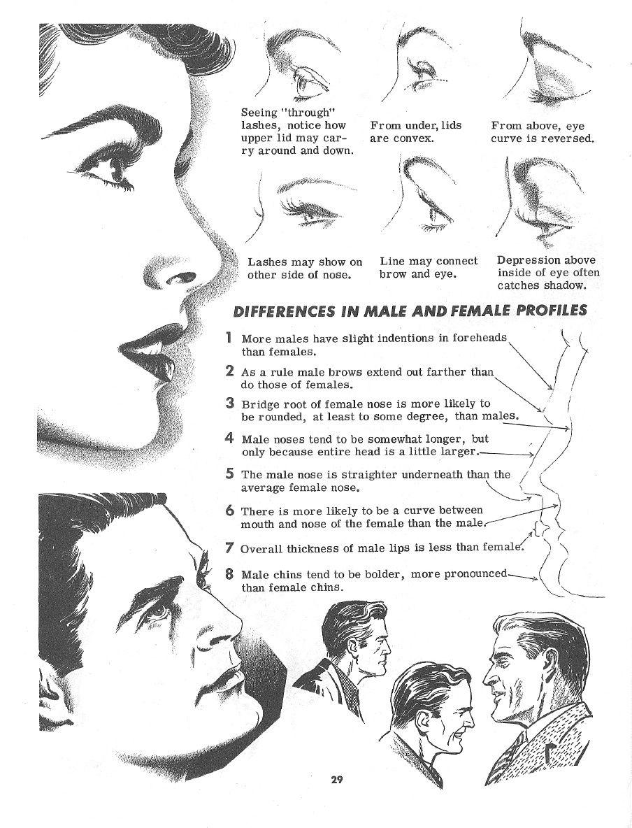 Drawing the Head and Figure - Jack Hamm | Anatomy Tutorials ...